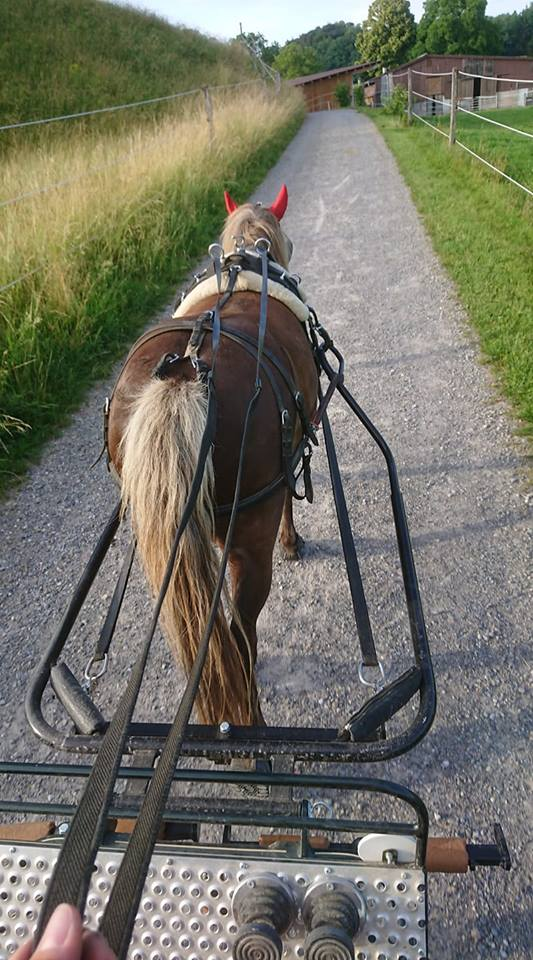 Key an der Kutsche