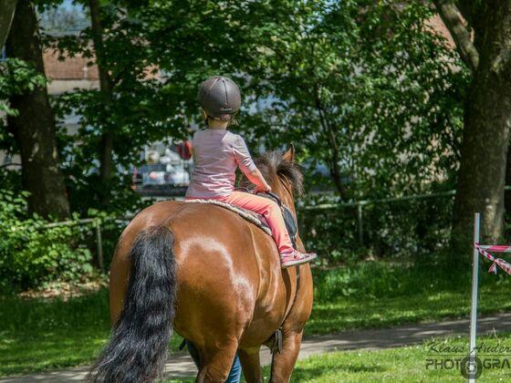 """Kinderfest in Stuttgart """"Ein Pferd für Kinder e.V.""""    21.05.2017"""