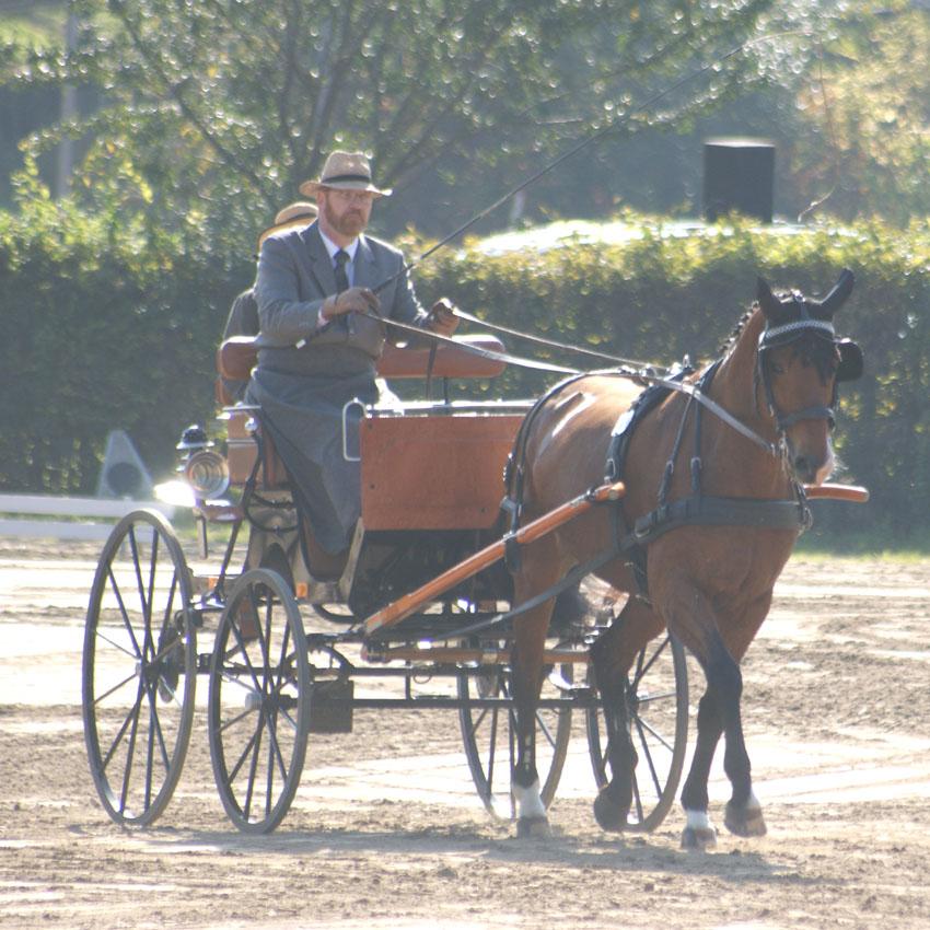 Herchenrode 2008