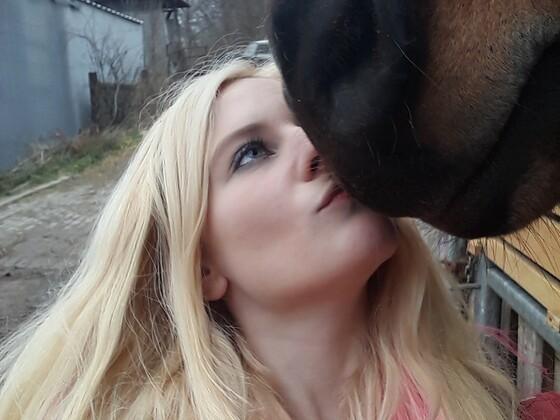 Geliebtes Pferdchen